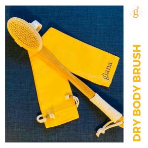 dry body brush
